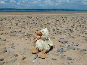 Flotsam on a UK beach