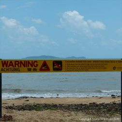 Saltwater crocodile warning sign in Queensland