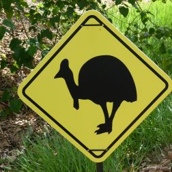 Cassowary warning sign in Queensland