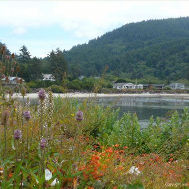 View at Yachats
