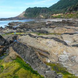 Near-parallel lines of dikes, with dark uniformly-textured basalt, cutting through softer fragmental basalt on the Oregon Coast