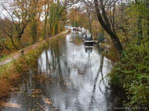 Canal at Goytre Wharf