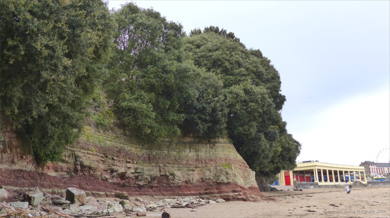Triassic rock at Whitmore bay on Barry Island