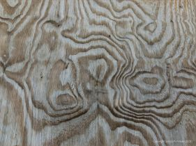Woodgrain patterns in plywood