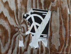 Woodgrain patterns in plywood