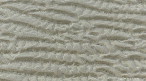 Natural patterns in the sand