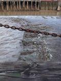 Soft mud on a tidal river bank
