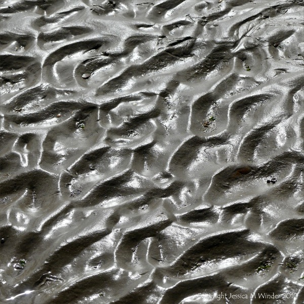 Ripples in sand on the seashore