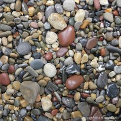 Smooth coloured pebbles at Caswell Bay