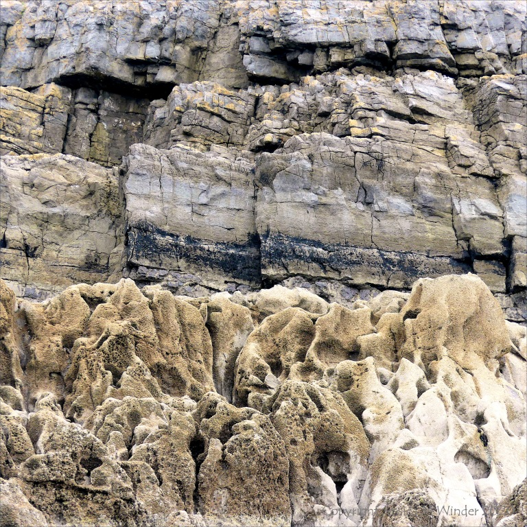 Carboniferous Limestone on the Gower Peninsula