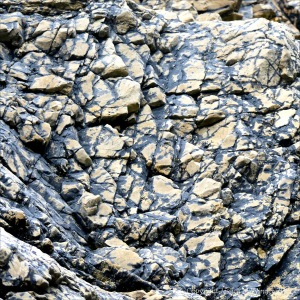 Natural pattern of black lichen in rock crevices