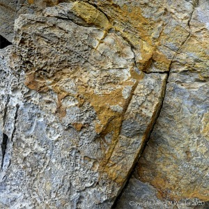 Limestone rock texture with yellow lichen
