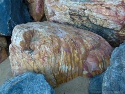 Boulder in rock armour at Trinity Beach in Queensland