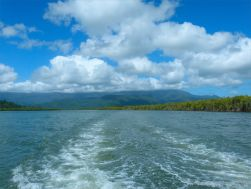 The boat wake on the Mulgrave River