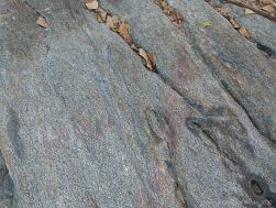 Macro of granite texture at Trinity Beach