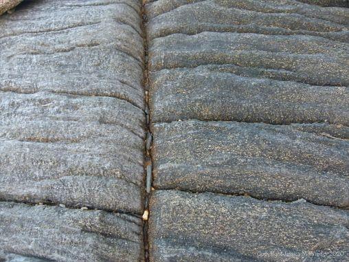 Macro of granite texture at Trinity Beach