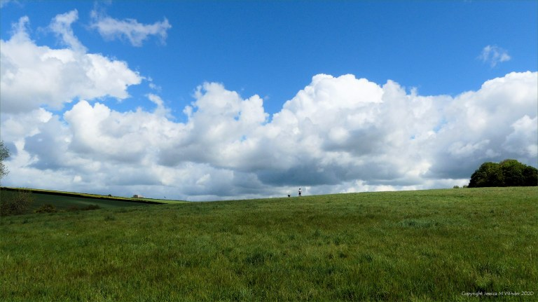 Green fields and big skies around Charlton Down in Spring