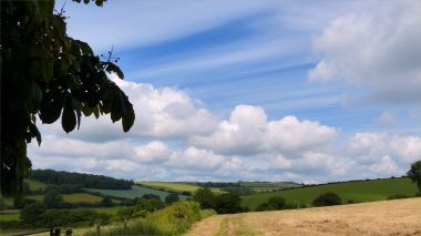 View from a walk around a Dorset country village in June