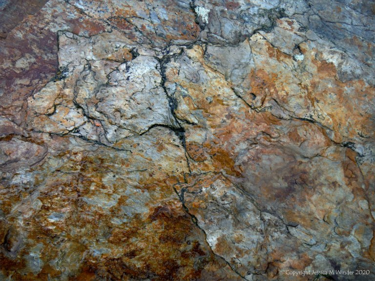 Close up photograph of metamorphic rock