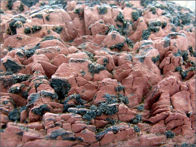 Red rocks on the seashore with black lichen
