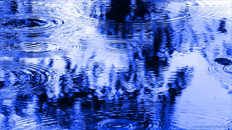 Concentric ripple patterns on water