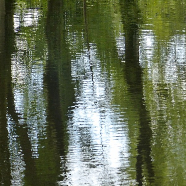 Natural abstract reflections on a canal