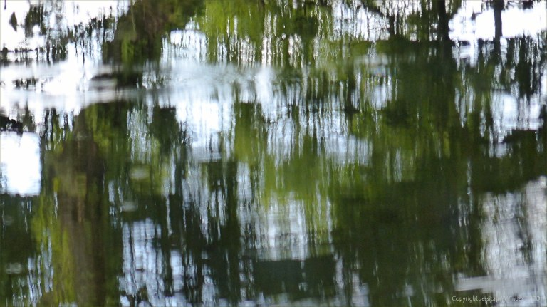 Natural abstract patterns in reflections on water