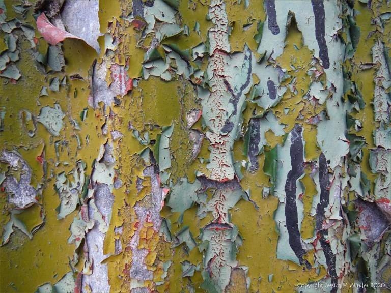 Colour, pattern and texture in peeling paintwork