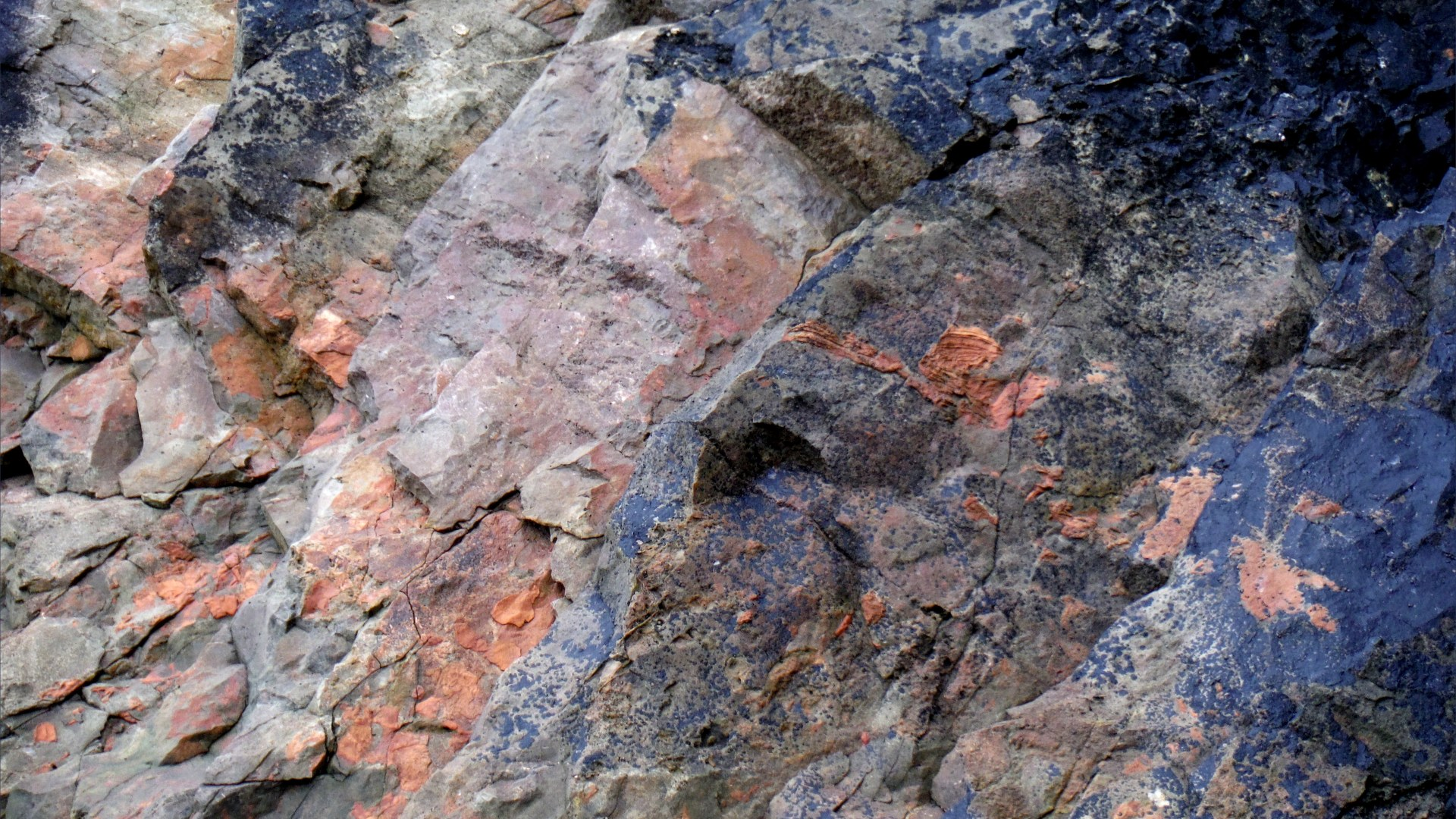 Texture and pattern in a limestone rock face