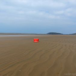 Red buoy washed up on sandy beach as flotsam