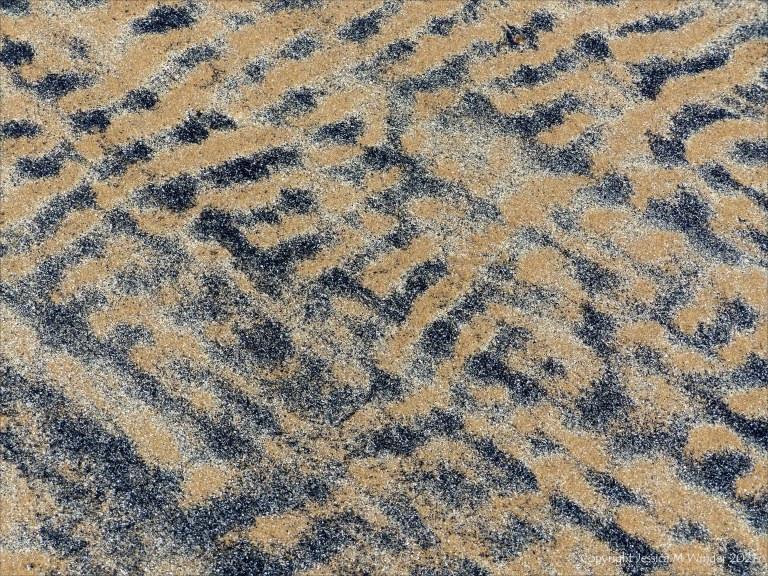 Patterns of black detritus on intertidal sand