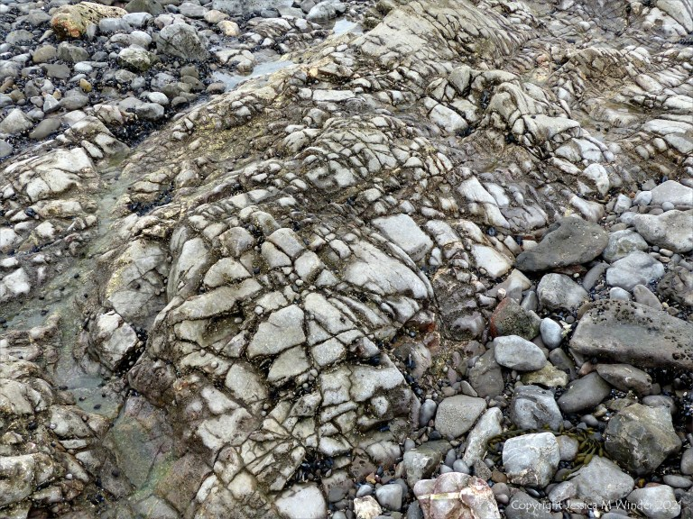 Pattern of cracks and crevices in rocks