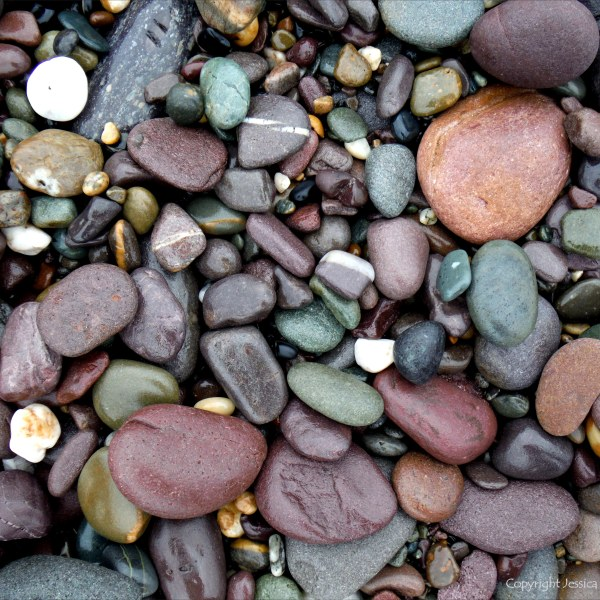 Coloured wet pebbles on the beach