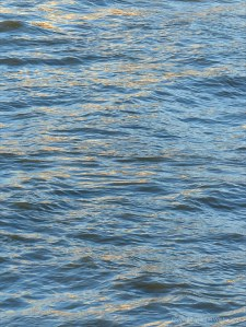 Golden reflected light on water in deep flowing river
