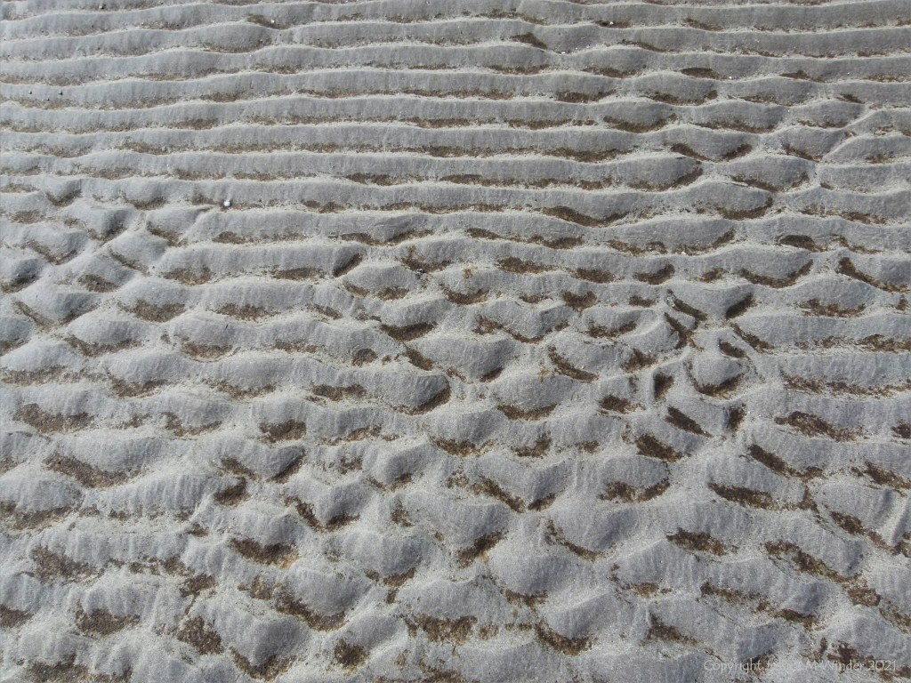 Natural patterns and texture in sand
