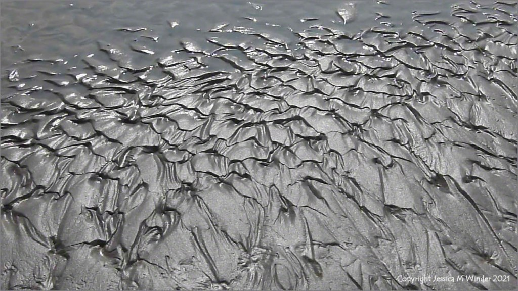 Natural patterns and texture in wet sand on the seashore