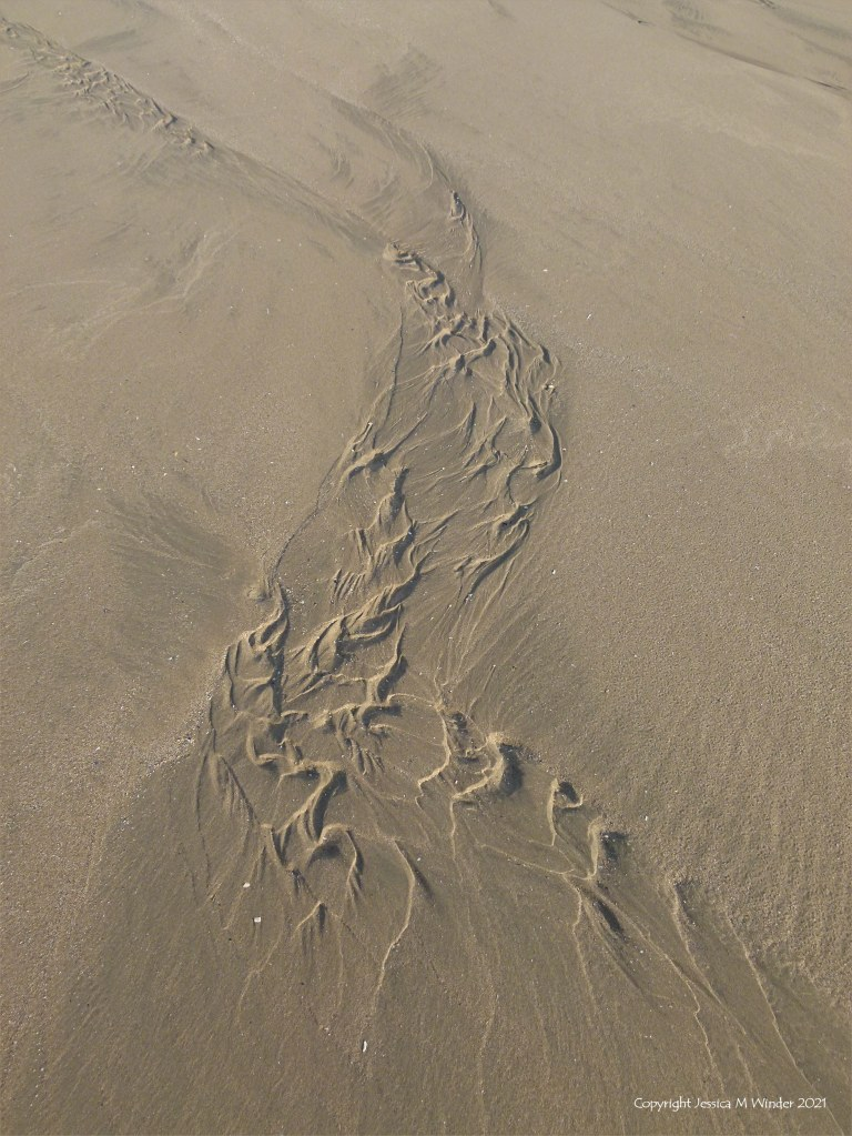 Asymmetrical sand ripple patterns on the beach