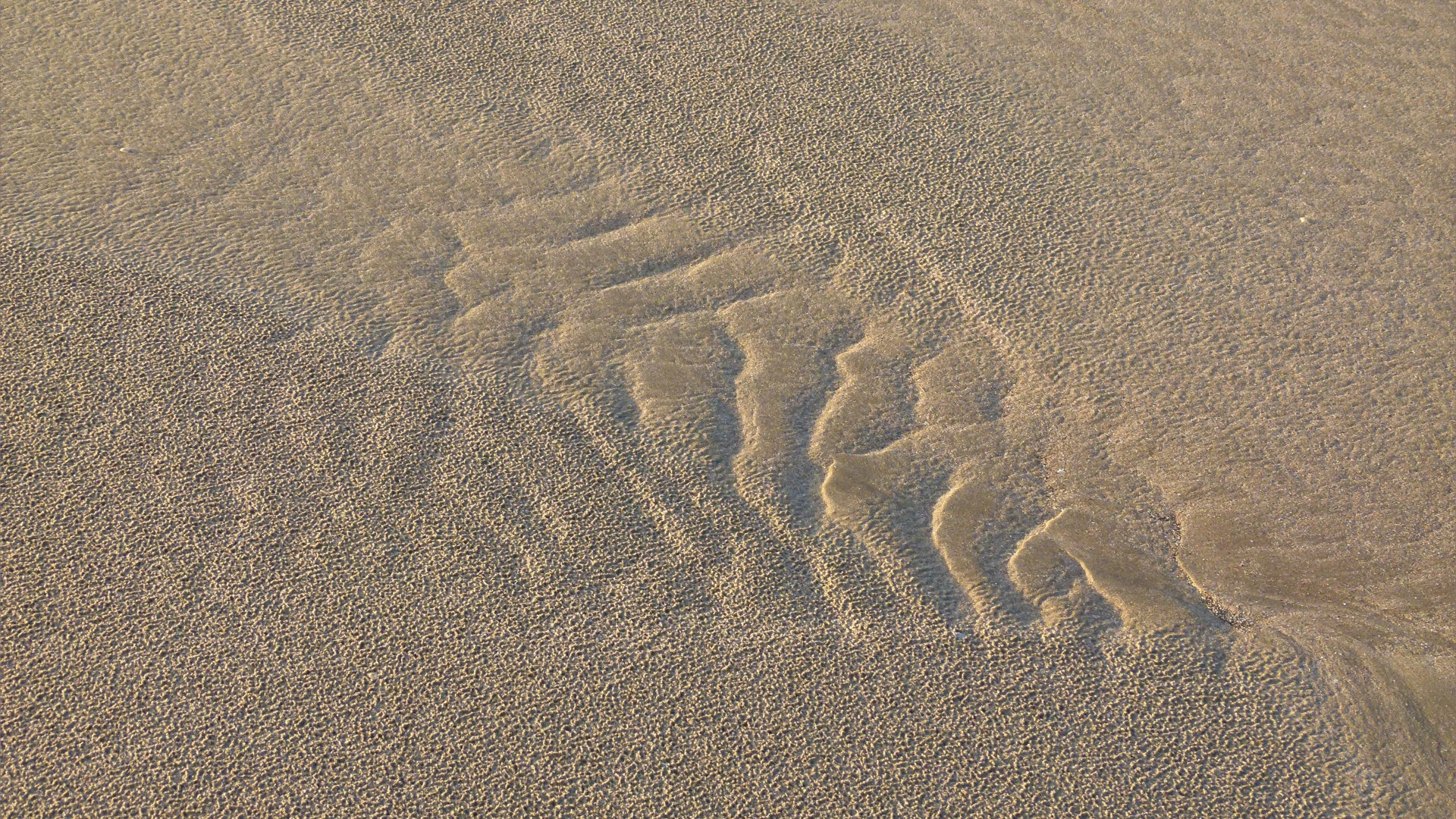 Natural abstract ripple patterns in the sand on a beach