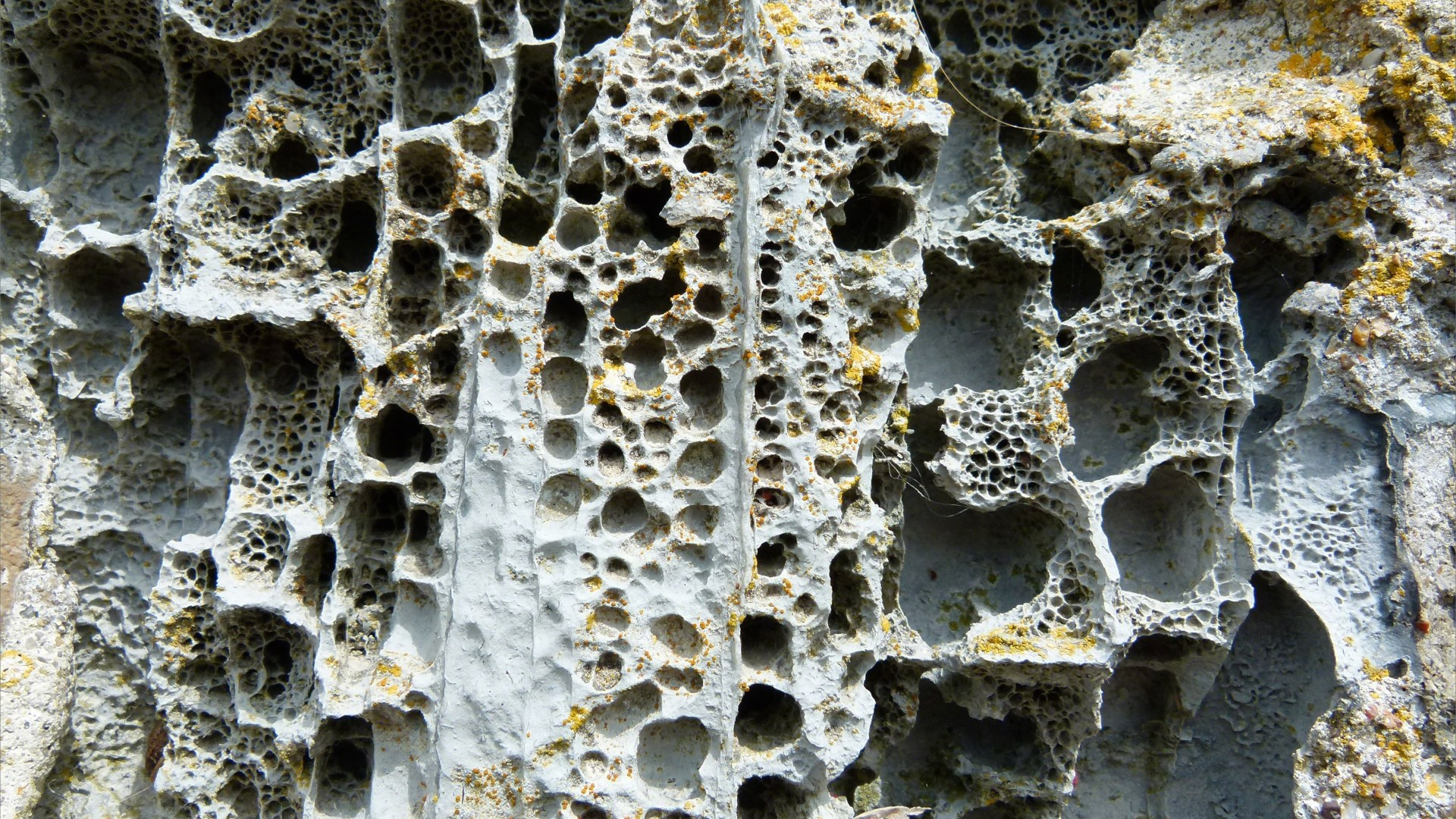 Sea wall rock with holes caused by weathering erosion