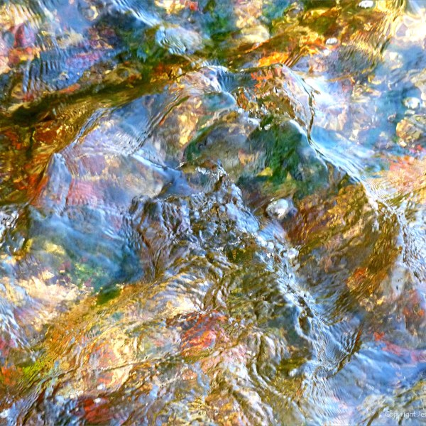 Close-up of water surface texture and colour in a river