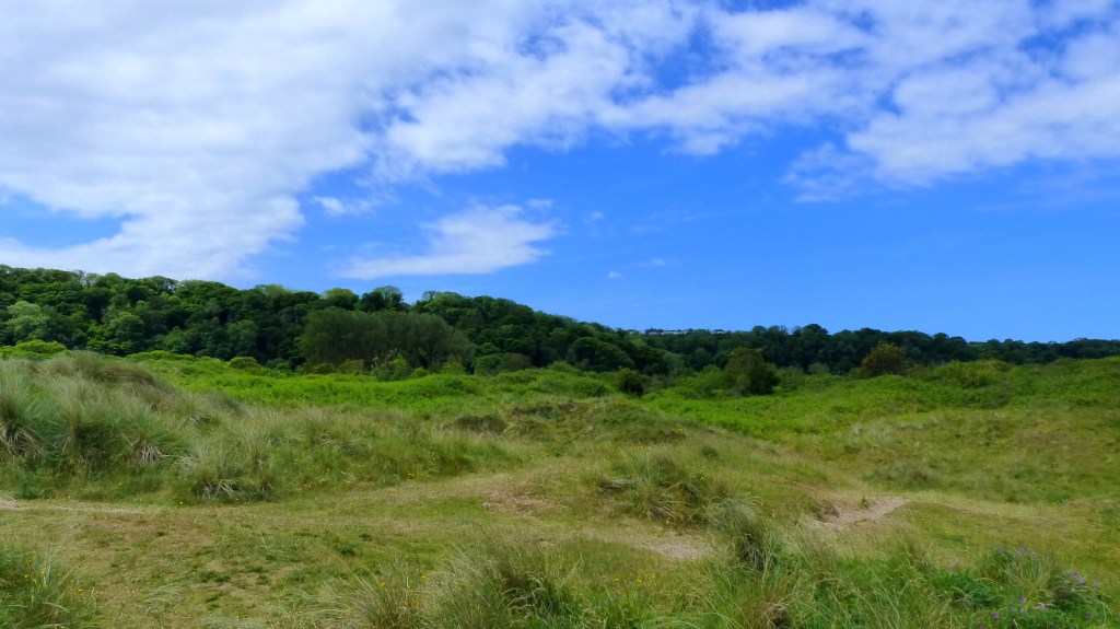 Dune grassland at Oxwich Bay with blue sky and clouds
